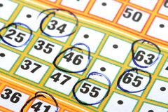 Bingo card Stock Photography