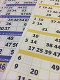 Bingo cards Stock Image