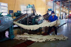 Worker working at rubber processing factory Stock Photos