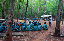 Worker meeting at rubber plantation. BINH PHUOC, VIET NAM- MAY 9. Dong Phu plantations rubber worker meeting with team leader to report their work .  Binh Phuoc Stock Photos