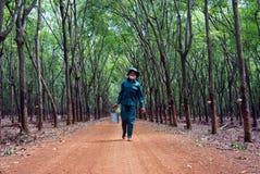 BINH PHUOC, VIETNAM 9 MAGGIO Fotografia Stock Libera da Diritti