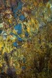 Binnen de Vulkaan Stock Afbeeldingen