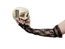Binnen toestellen van een schedel Stock Foto's