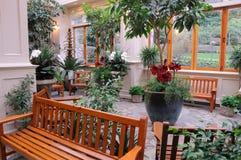Binnen tuin Stock Foto