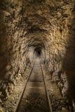 Binnen verlaten goudmijntunnel of schacht in de woestijn van Nevada royalty-vrije stock fotografie