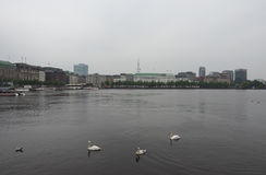 Binnenalster (lago interno Alster) a Amburgo Fotografie Stock