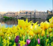 Binnenhof - голландский парламент, Голландия стоковое изображение