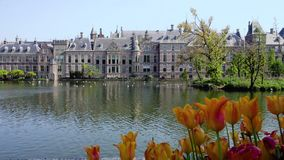 Binnenhof - Dutch Parliament, Holland. Binnenhof - Dutch Parliament with reflections in pond, The Hague at spring with flowers, Holland stock video