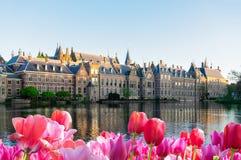 Binnenhof - holländsk parlament, Holland arkivfoto