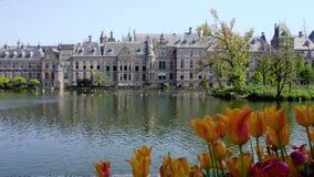 Binnenhof - il Parlamento olandese, Olanda archivi video