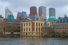 Binnenhof, polityczny centrum holandie obraz royalty free