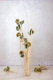 Binnenland met bloemen Stock Afbeeldingen