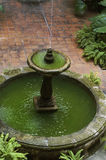 Binnenland met fontein Royalty-vrije Stock Foto's