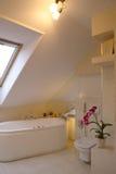 Binnenland van badkamers Stock Foto's
