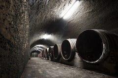 Binnenland van een oude wijnkelder, vaten stock afbeeldingen