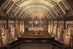 Binnenland van het Museum van de Biologie, Londen. HDR Stock Foto