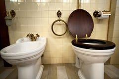 Binnenland van luxe uitstekende badkamers Royalty-vrije Stock Afbeelding