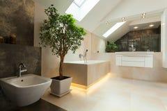 Binnenland van moderne badkamers Stock Afbeelding