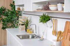 Binnenland van moderne witte keuken met houten keukengerei en mandarin boom op achtergrond Stock Foto