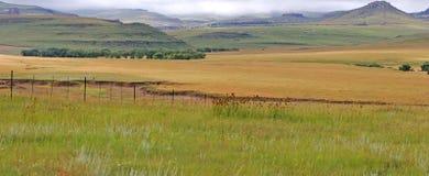 Binnenlands landschap stock foto's