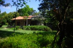 Binnenlandse het parkdetails van Quinta da Conceicao stock afbeeldingen