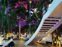 Binnenlandse trap in het Palmgebied Royalty-vrije Stock Afbeelding
