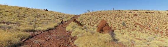 Binnenlandweg, Australië Royalty-vrije Stock Foto's