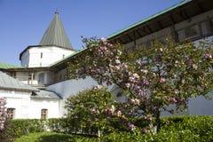 Binnenplaats van een oud klooster Royalty-vrije Stock Fotografie