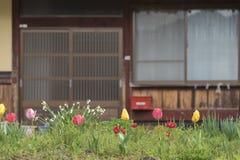 Binnenplaatstuin in Japan stock foto