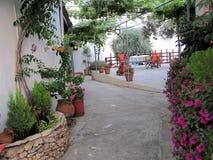 Binnenplaatstuin met veel bloemen royalty-vrije stock fotografie