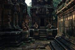binnenyard van één van de tempel met gesneden die steenstandbeelden en muren over door vegetatie worden gekweekt royalty-vrije stock foto's