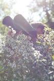 Binocolo della holding dell'osservatore di giovane uccello Fotografia Stock Libera da Diritti