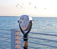 Binocolo della moneta alla spiaggia Fotografia Stock