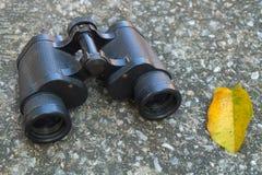 Binocolo metallico o binocoli della mano nera Fotografia Stock