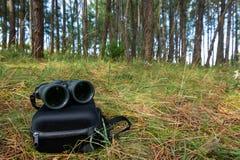 Binoculars in a pineforest stock photos