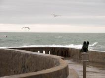 Binokulärt och tre seagulls som flyger i väg från kusten arkivbild