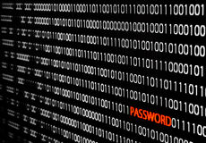 Binär Code mit Passwortdiebstahl Lizenzfreie Stockfotografie