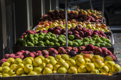 Bins of apples Royalty Free Stock Photo