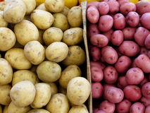 Bins of potatoes Stock Image
