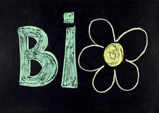 Bio. Text with flower on blackboard Royalty Free Stock Image