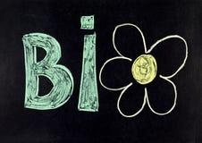 Bio- immagine stock libera da diritti