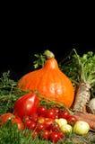 bio aún vida de las verduras Imagen de archivo libre de regalías
