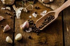 Bio- aglio domestico - Ceco, spezie ed aglio domestico dei microgreens freschi bio- fotografie stock libere da diritti
