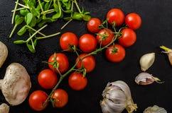 Bio- aglio, spezie e funghi selvaggi dal giardino domestico immagine stock libera da diritti