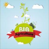 Bio- agricoltura Fotografie Stock