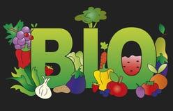 Bio alimento ilustração royalty free