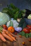 Bio alimento biológico del concepto Ingredientes para cocinar sano Verduras e hierbas en fondo de madera Preparación de platos de Imagen de archivo libre de regalías