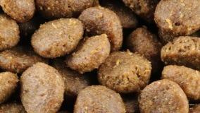 Bio- alimento per i cani video d archivio