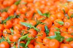 Bio- arance fresche sul mercato dell'agricoltore di Parigi Immagini Stock