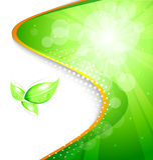 Bio background. Green-white bio background for your text Royalty Free Stock Photos